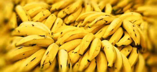 Benefícios do consumo diário de banana.